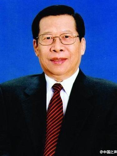 悼念央视原台长杨伟光
