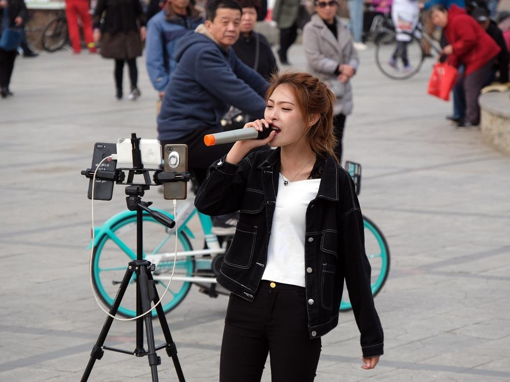 """中国沈阳一公园网络直播火爆 市民""""上树""""观看[图集]"""